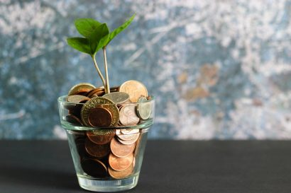 image of a small plant growing from a flower pot filled with coins